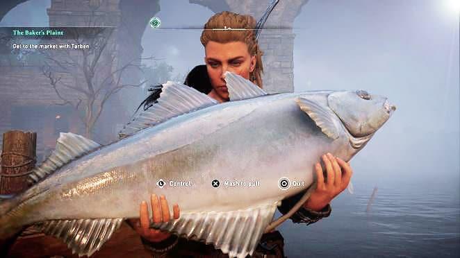 На что и как ловить рыбу в Assassin's Creed Valhalla